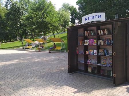 У книжного шкафа