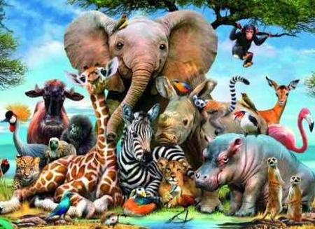 Мир животных Игоря Акимушкина