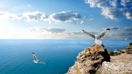 Игра «Сокровища черноморских глубин»
