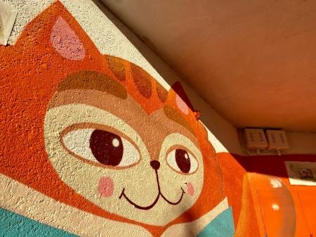 На фасаде библиотеки №2 появился рыжий кот!