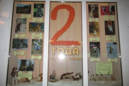 Выставка, посвящённая собаке