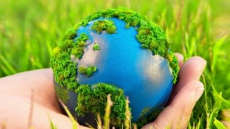 Экологическая игра для младших школьников